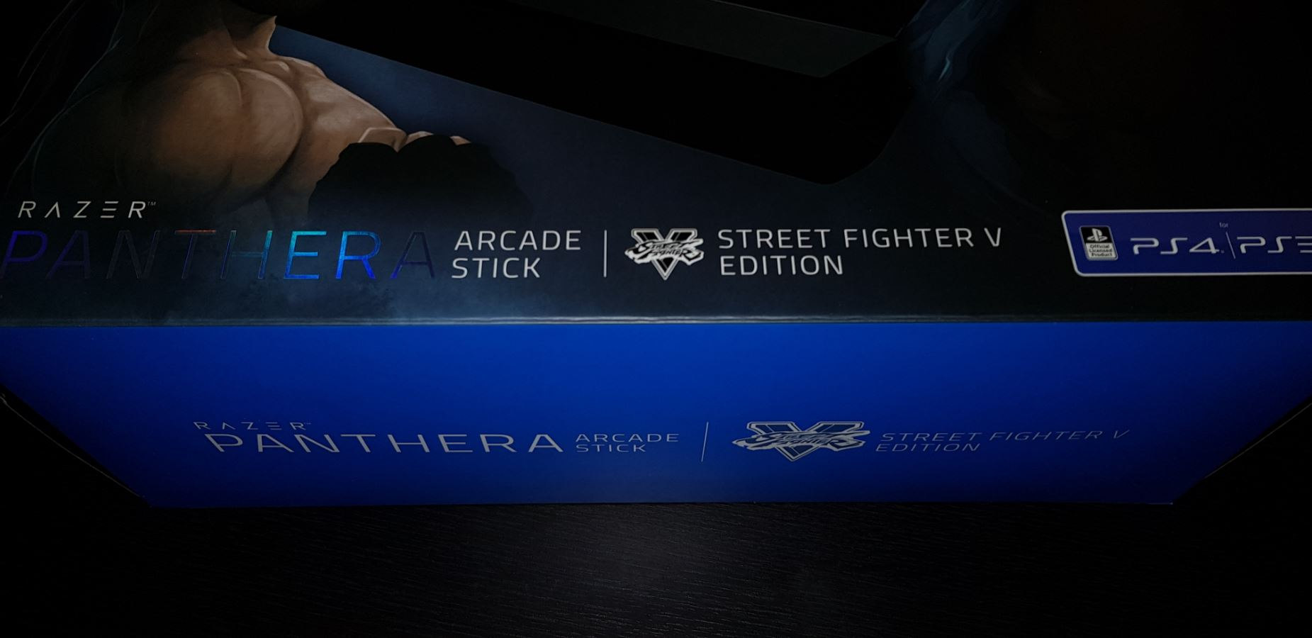 Test Razer Panthera Street Fighter V Edition 10