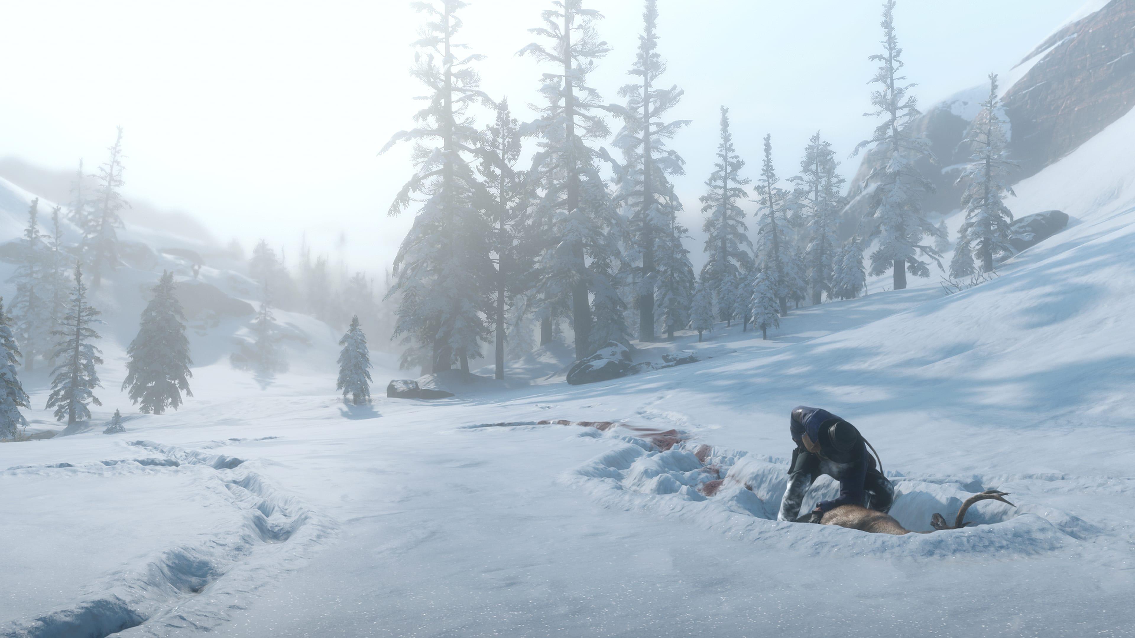 Guide Les Animaux dans Red Dead Redemption Chasse et pêche 2