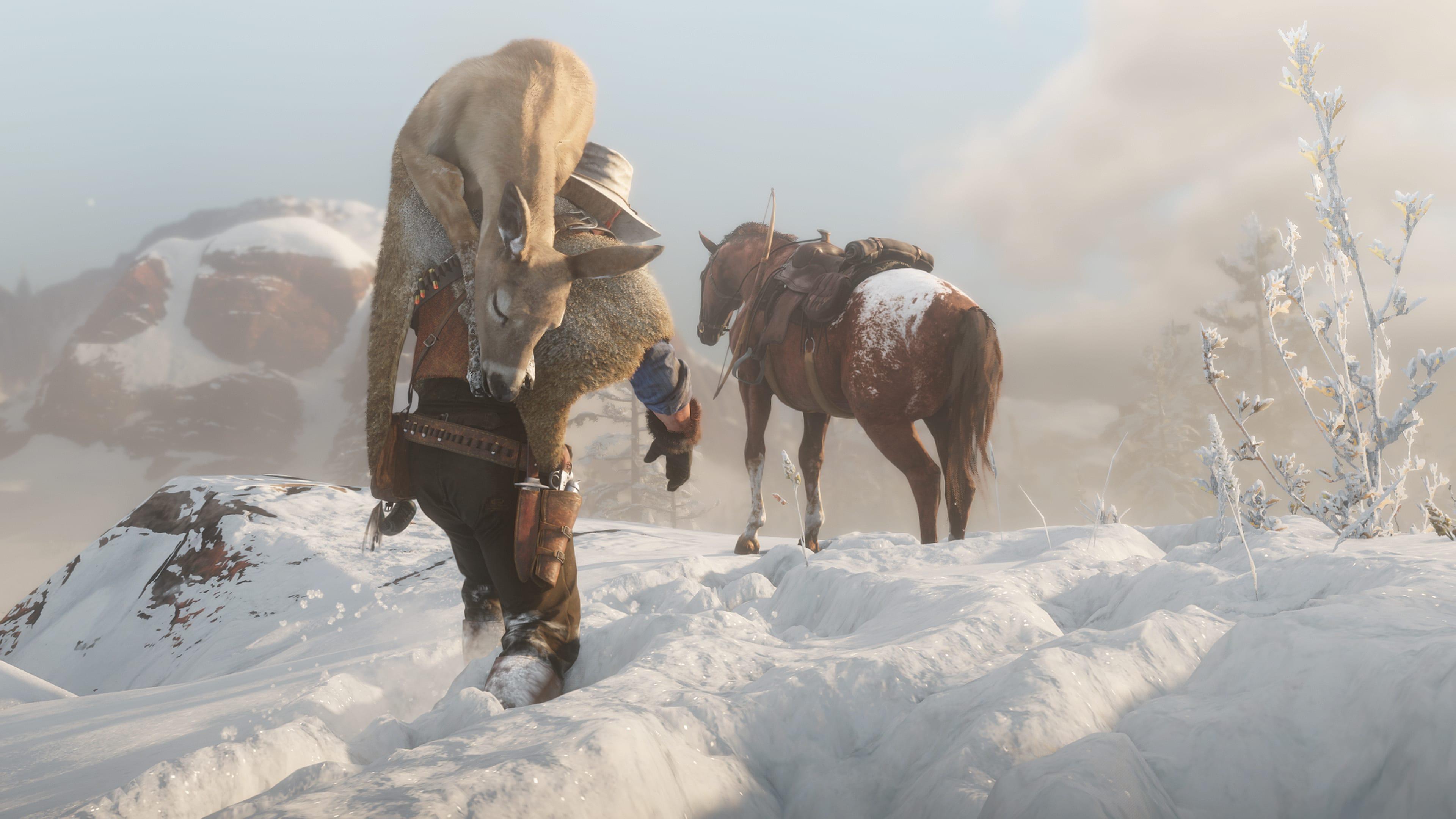 Guide Les Animaux dans Red Dead Redemption chevaux 4